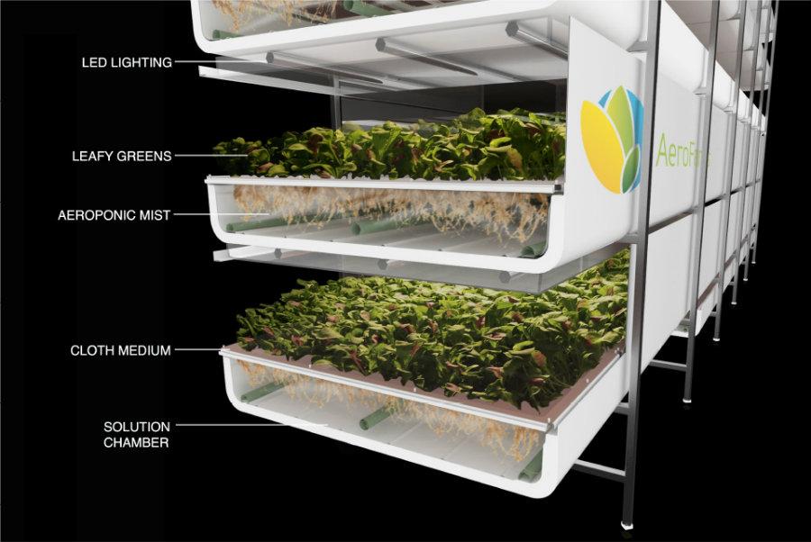 Aerofarms 재배 방식의 기본구조 ⓒAerofarms