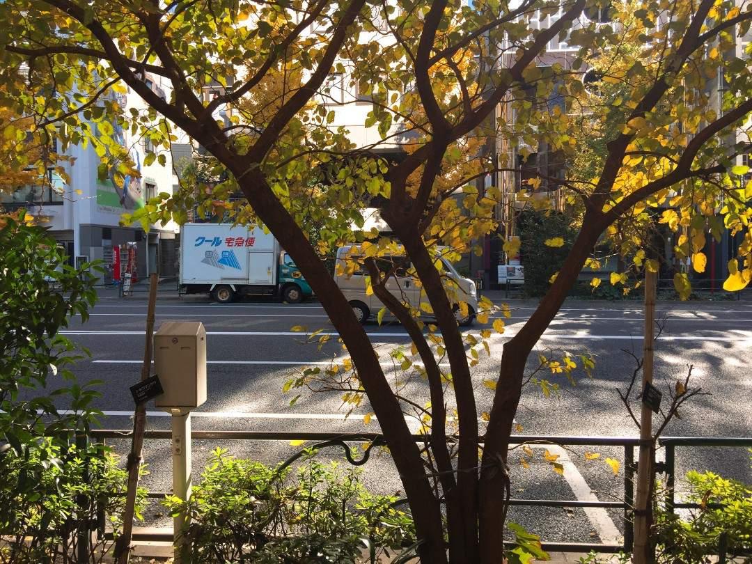 다이칸야마역에서 츠타야 T-사이트로 가는 길. 바쁘게 움직이는 도시가 점점 한적해지는 모습을 보니 마음이 차분해졌다. ©생각노트