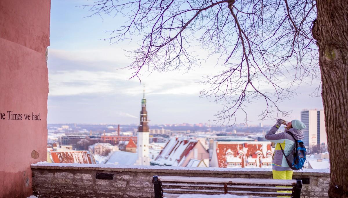 내가 에스토니아에 왜 왔더라?