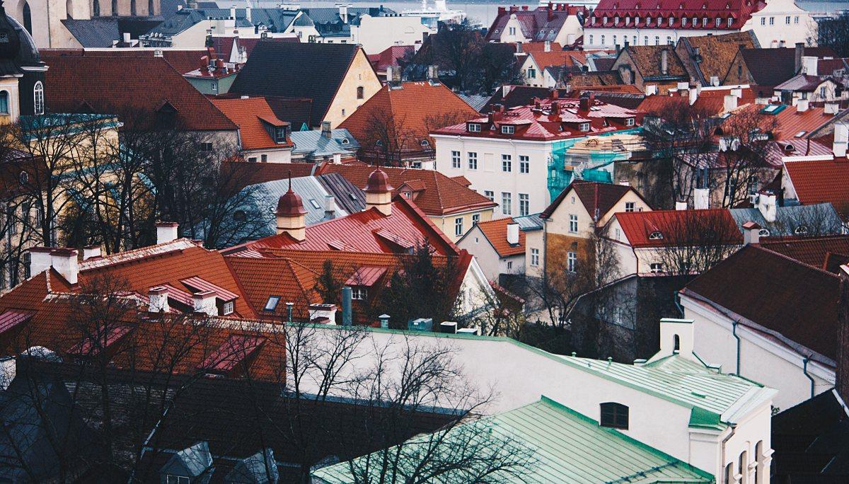 에스토니아 리얼 창업 가이드
