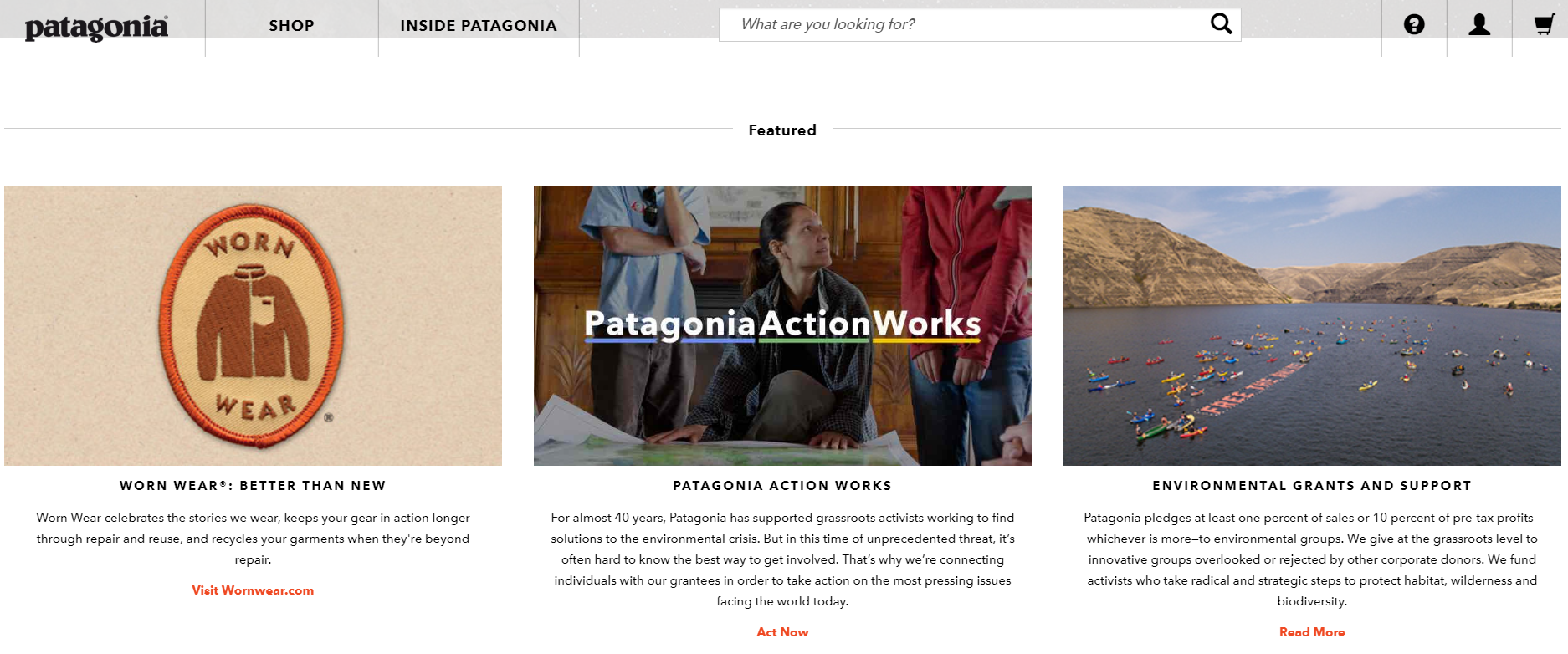 Patagonia Official Website ⓒPatagonia